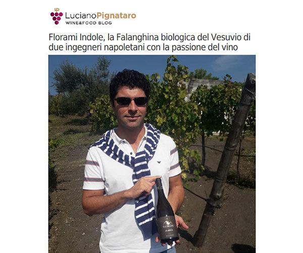 Rassegna Stampa Florami da Luciano Pignataro blog